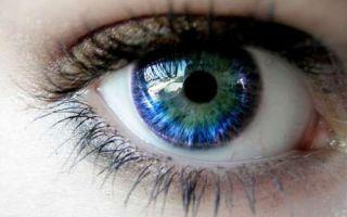 Дерматит на веке глаза
