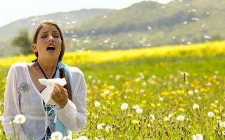 Ничего не помогает от аллергии