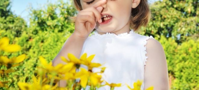 Где сдать анализы на аллергены ребенку