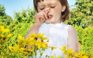 Сдать на аллергены