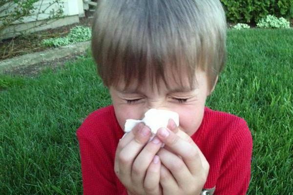 сильные аллергены