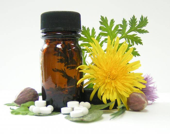 аллергия на амброзию при беременности