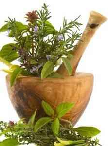 Лечение аллергии народными средствами — Блог о здоровье Физ-Ра.com