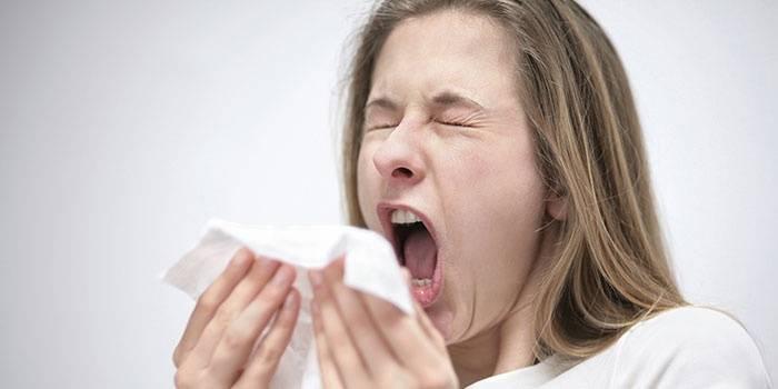 Чихание - признак респираторной аллергии