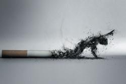 Курение - причина вазомоторного ринита