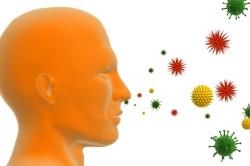 Принцип попадания аллергенов в организм человека