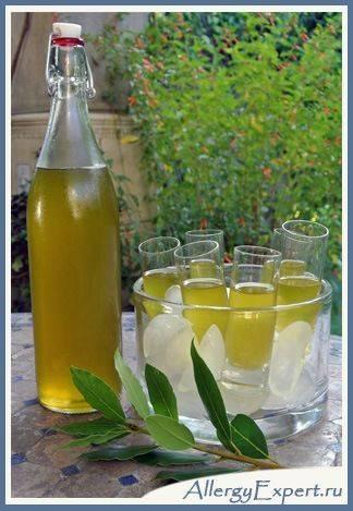 масла из лаврового листа