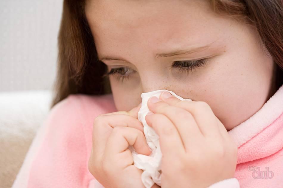 Признаки аллергии на животных