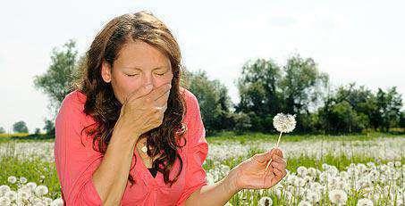 Причины проявления аллергии на пыльцу