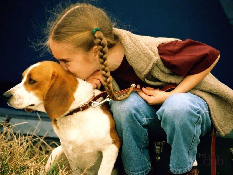 Чаще всего аллергию у детей вызывают продукты питания и шерсть животных