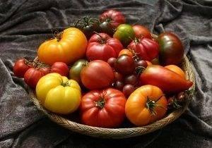 аллергия на помидоры у ребенка