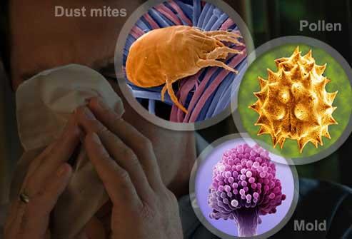 Грипп вместе с аллергией