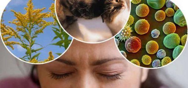 Основные факторы, способствующие развитию аллергии глаз