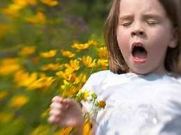 Аллергия на пылцу растений