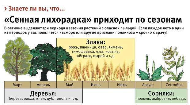Сезонные аллергии на растения