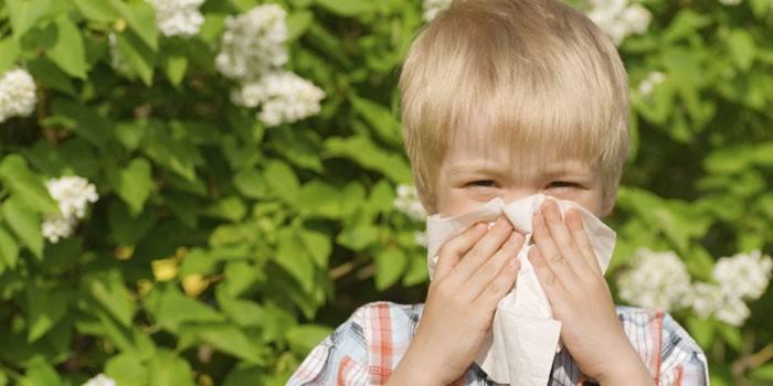 Ребенок прикрывает нос платком