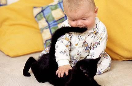 малыш и котенок, профилактика бронхиальной астмы у детей