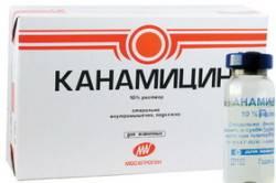 Канамицин как заменитель пенициллина
