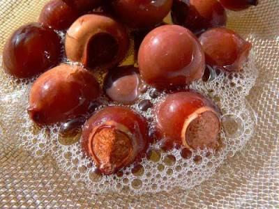 • Мыльные орешки из Индии
