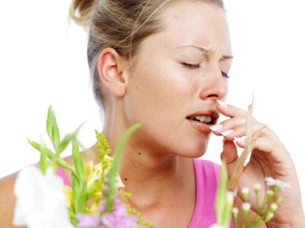 Советы аллерголога при поллинозе на полынь
