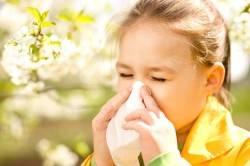 Проблема аллергии на яйца у детей