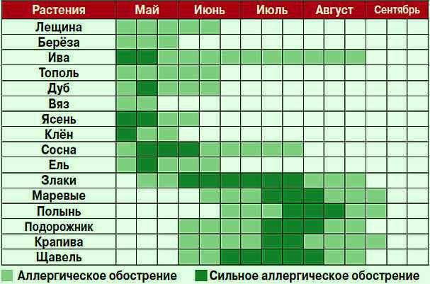 календарь аллергика, периоды цветения