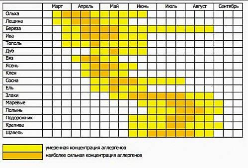 полный календарь аллергика