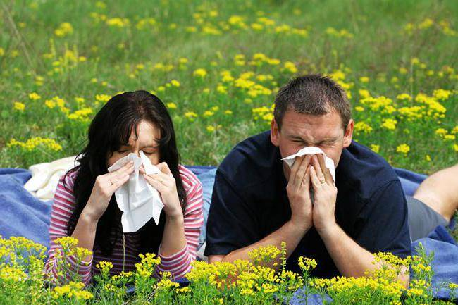 как лечить сезонную аллергию