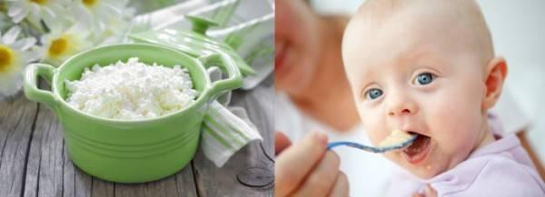 малыш кушает творог