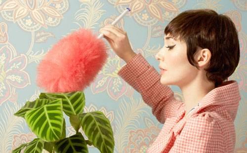 Женщина смахивает пыль с домашнего растения