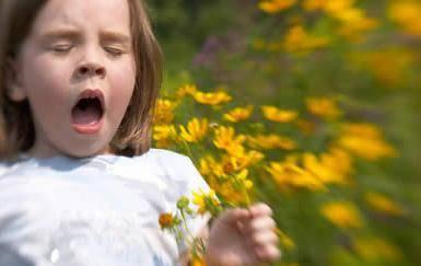 перекрестная аллергия на березу