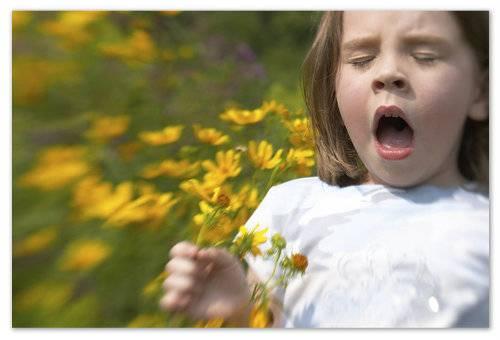 Спасает от сезонной аллергии.