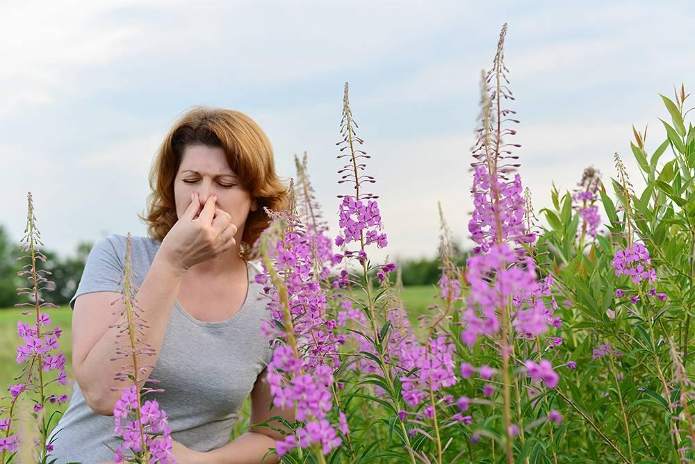 Насморк при аллергии носа