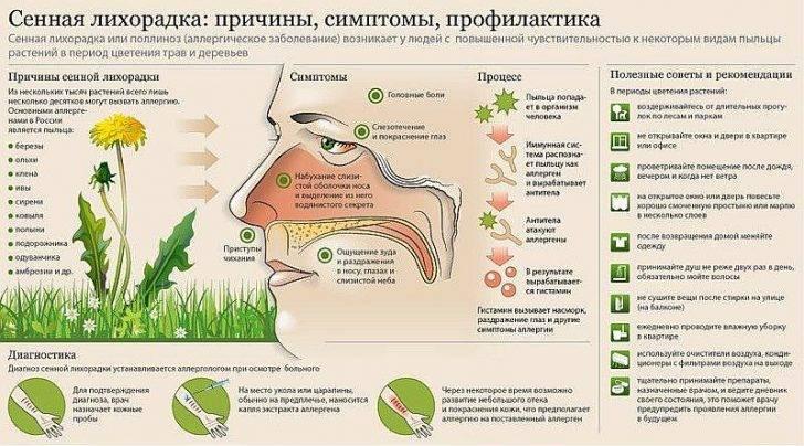 Для лечения аллергии в домаш условиях