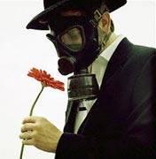 Как избавиться от пыльцы?