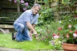 Контакт с почвой - фактор риска развития грибковой аллергии