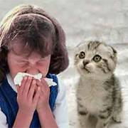 У детей на аллергию бывает ли температура