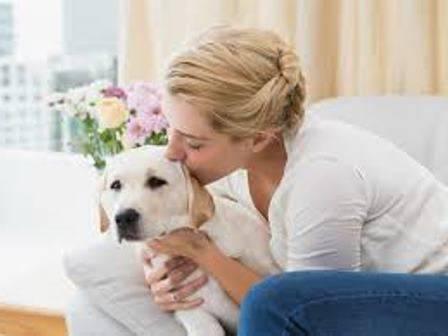какую собаку завести аллергикам