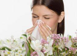 Аллергия в конце июля начале августа