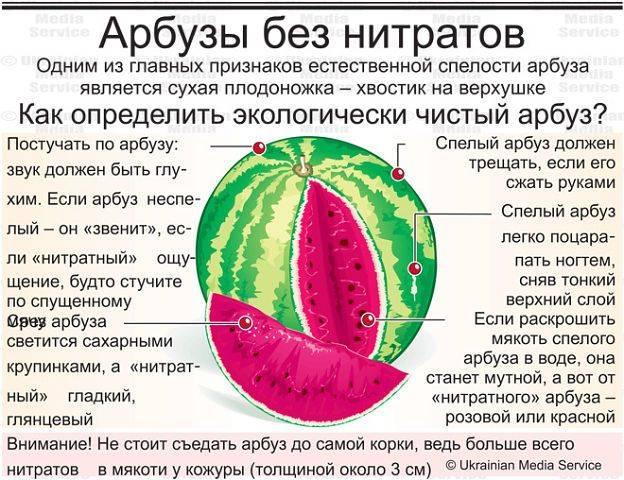 арбузы без нитратов