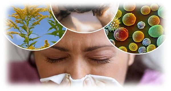 возможные аллергены