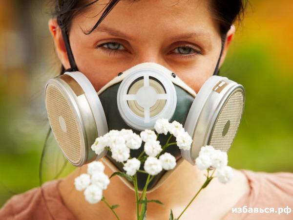 Аллергия на амброзию лечится долго