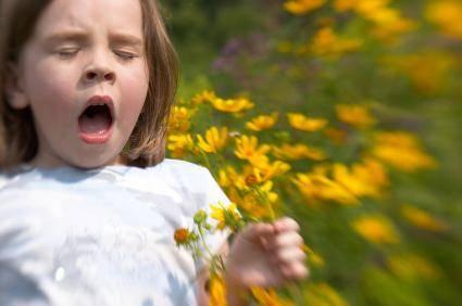 Трава от аллергии