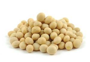 Аллергия на соевый белок у взрослых
