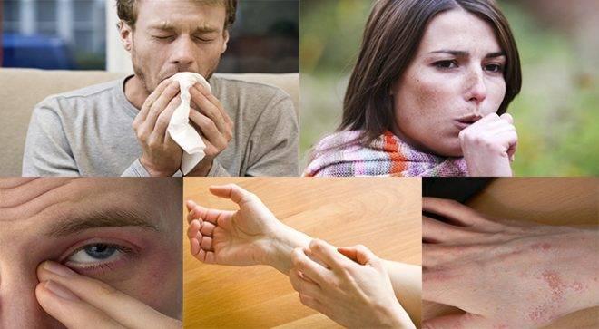 Симптомы аллергии на черепах