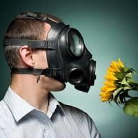 Трава амброзия - Аллергия